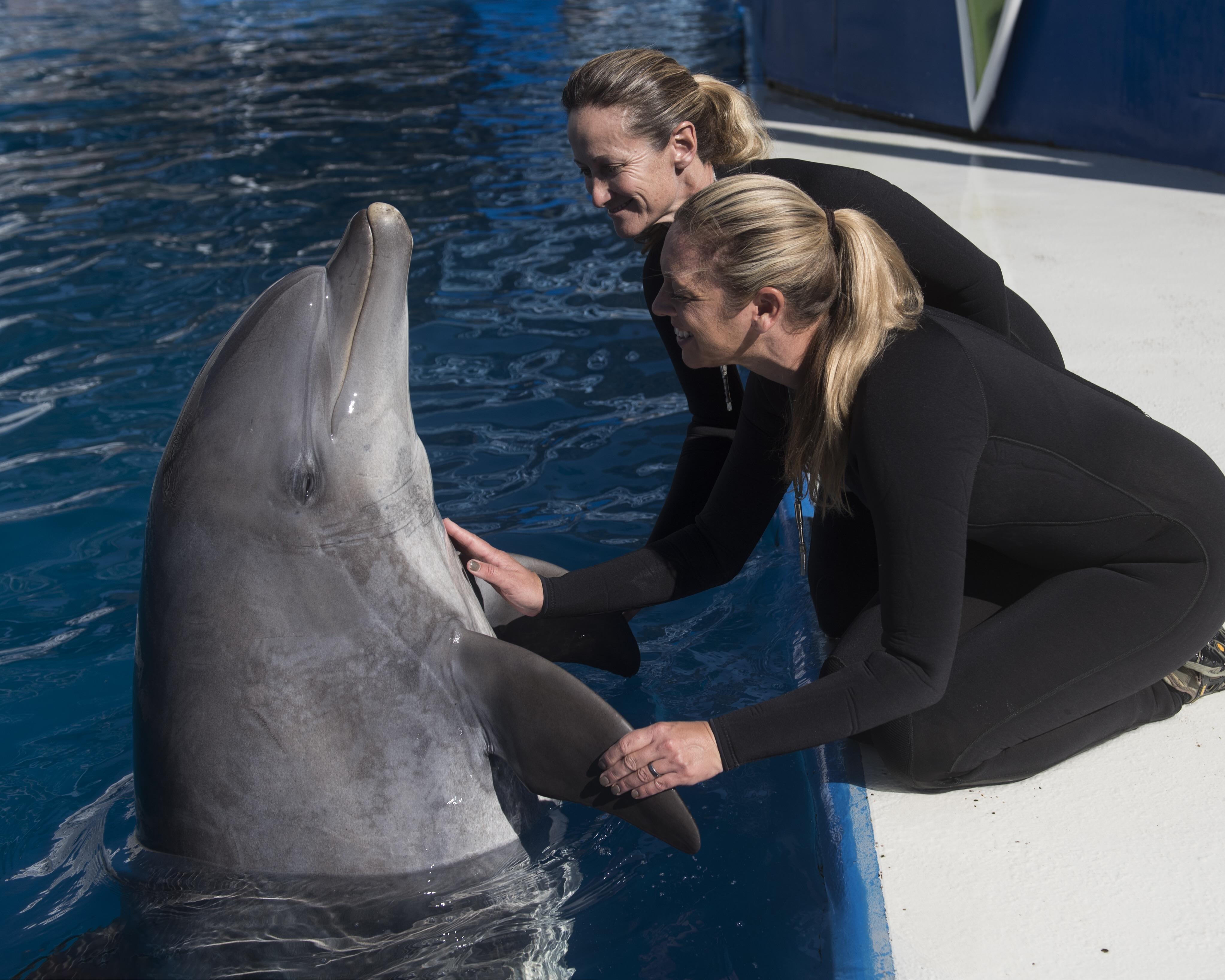 Meet Sandy and trainers Sephanie Jol and Tiffany Haskard (image credit: SeaWorld)