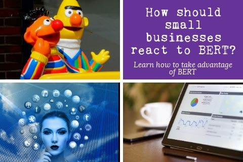 Featured image for 'how should businesses react to BERT?'