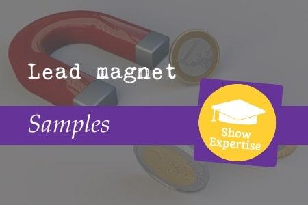 Lead magnet samples